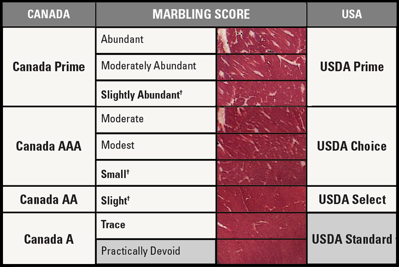 Levels of Beef Marbling